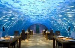 نخستین رستوران شیشهای زیردریایی/عکس