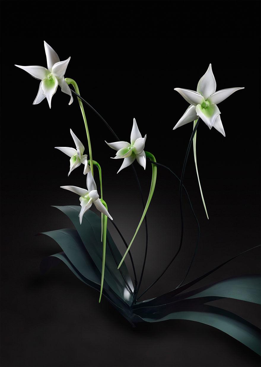 Jason-Gamrath-glass-flowers6