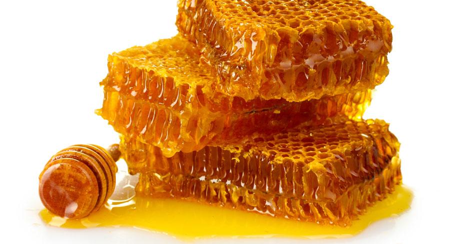 شانه-عسل