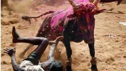 5 فستیوال باورنکردنی در هندوستان +عکس