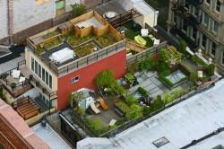 پشت بام آمریکاییهای ثروتمند + عکس