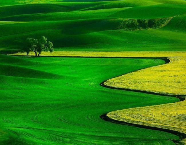 76 عکس های شگفت انگیز طبیعت