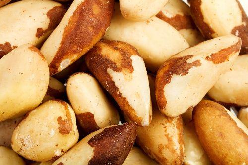 غذاهای کالری سوز,آجیل برزیلی