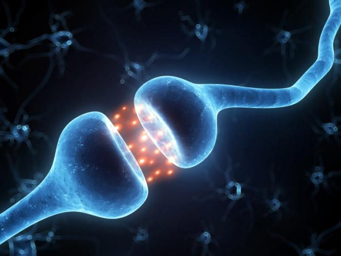 illustration-of-synaptic-activity