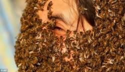 """رقابت """"مردان زنبوری"""" در جشنواره """"ریش زنبوریها"""" + عکس"""