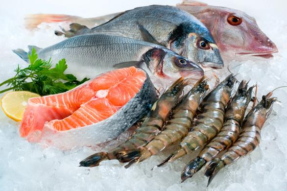 Paleo-fish