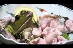 خوراک ویژه وزغ در رستورانهای ژاپن+عکس