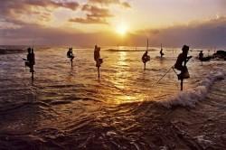 روش عجیب ماهیگیری+عکس