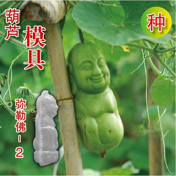 پرورش سبزیجات عجیب در چین