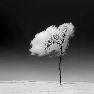 IMG10022230 بازی با ابرها   عکاسی خلاقانه