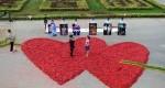 خواستگاری با 99999 فلفل قرمز به شکل قلب+عکس