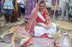ازدواج زن 18ساله هندی با یک سگ برای شکستن طلسم شیطان+عکس