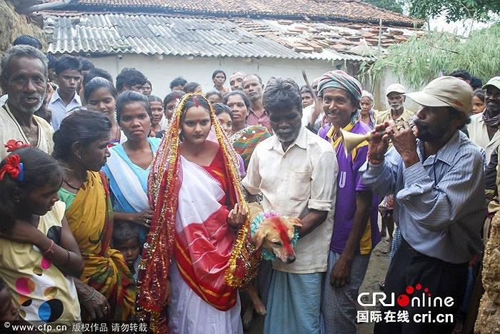 ازدواج زن 18ساله هندی با یک سگ برای شکستن طلسم شیطان+عکس 1