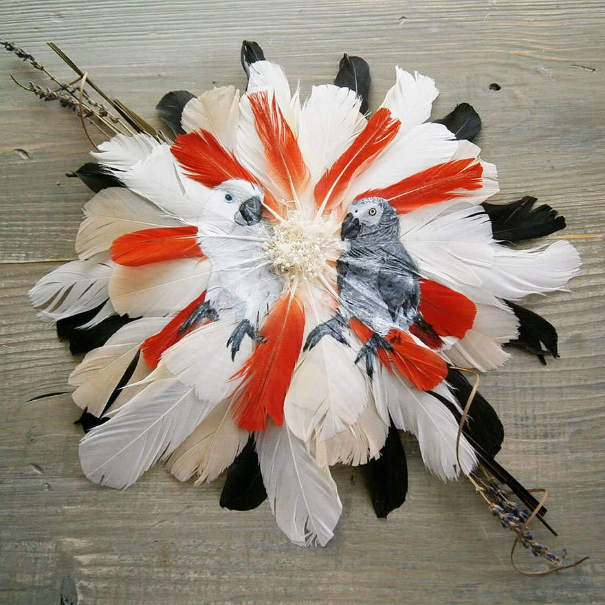 feather-paintings3
