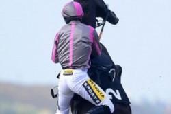 ثبت لحظه معلق ماندن اسب سوار در پی رم کردن اسبش + عکس