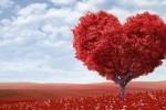 10حقیقت علمی در رابطه با عشق