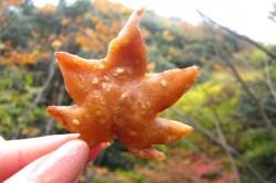 برگ سوخاری، یک غذای محبوب در ژاپن+عکس