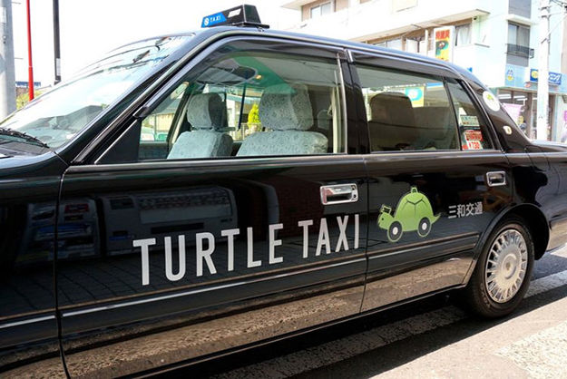 turtle-taxi