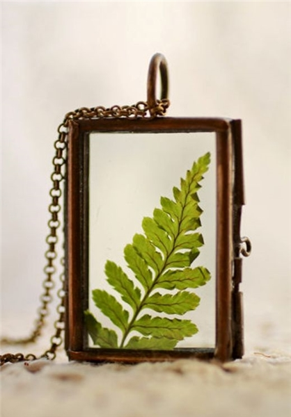 جواهر و گیاه