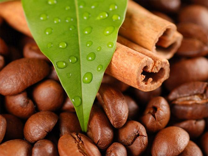 coffee 12 عکس های جالب از قهوه