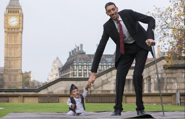بلندترین و کوتاه ترین مردان جهان