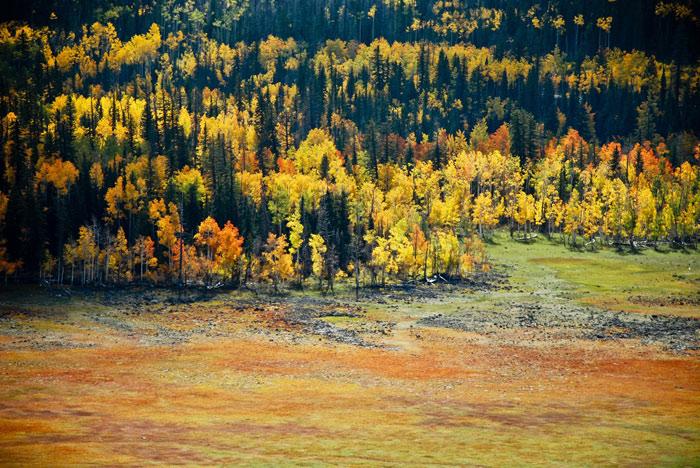 Beautiful pictures of autumn 15 عکس پاییز Fall Photos