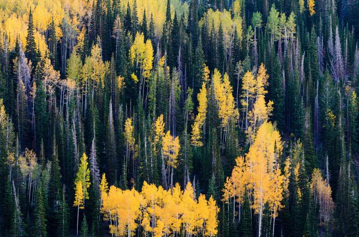 Beautiful pictures of autumn 18 عکس پاییز Fall Photos
