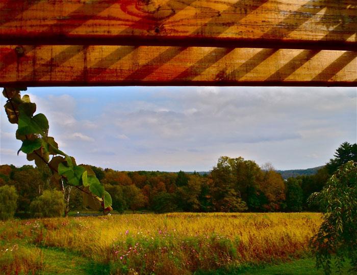 Beautiful pictures of autumn 19 عکس پاییز Fall Photos