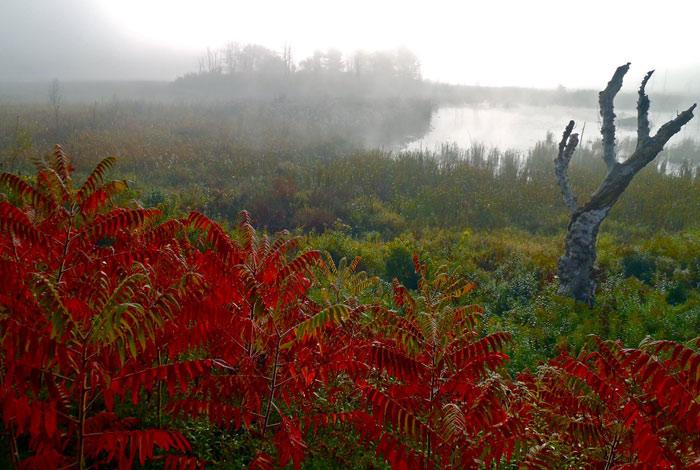 Beautiful pictures of autumn 2 عکس پاییز Fall Photos