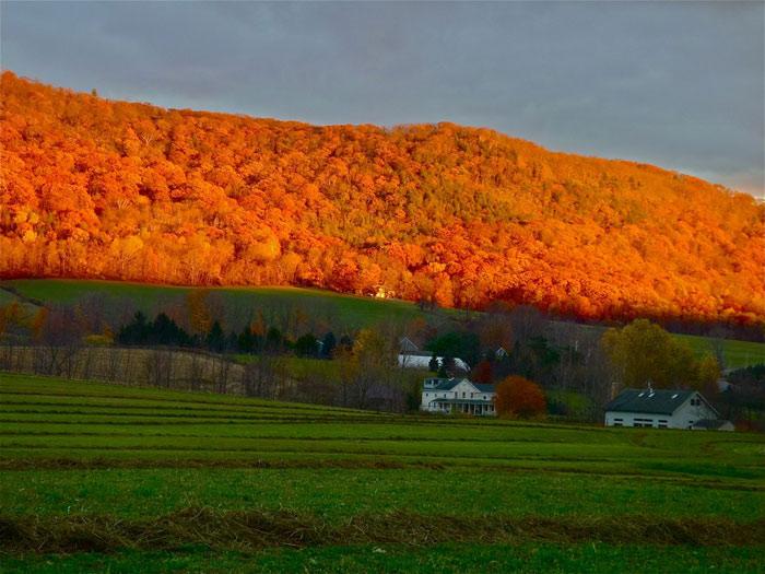Beautiful pictures of autumn 4 عکس پاییز Fall Photos