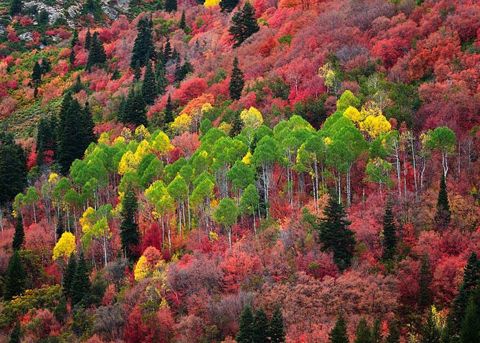Beautiful pictures of autumn 7 عکس پاییز Fall Photos
