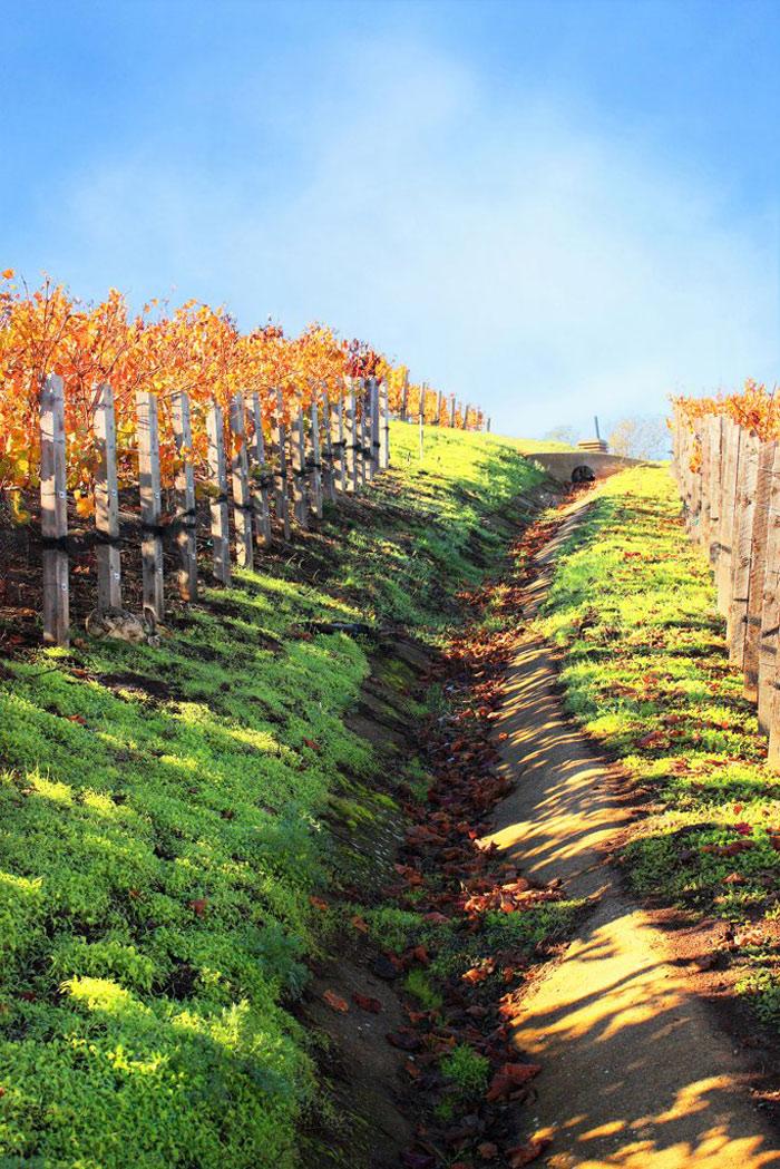 Beautiful pictures of autumn 9 عکس پاییز Fall Photos