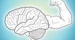 ورزشهای برای پرورش مغز