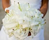 مدل دسته گل عروس/گل ارکیده