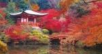 ۳ دلیل برای سفر به ژاپن