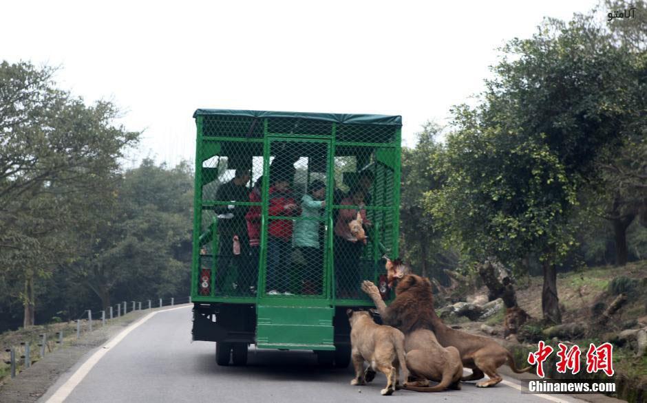 unique-zoo-experience