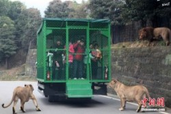 عجیب ترین باغ وحش دنیا +عکس