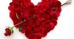 آیا عشق براي سلامت مضر است؟