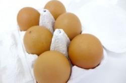 تخم مرغ مرکباتی ؛ یک غذا عجیب دیگر در ژاپن+عکس