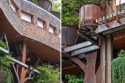 خانهای که از ۱۵۰ درخت ساخته شد!+عکس