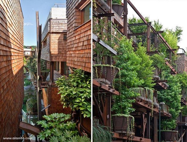 خانهای که از ۱۵۰ درخت ساخته شد