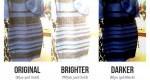 مشکی و آبی یا طلایی و سفید، این لباس چه رنگی است؟
