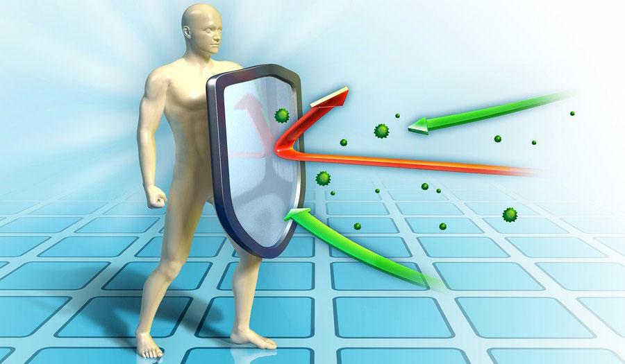 Immune system راهکارهایی برای بازسازی سیستم ایمنی بدن
