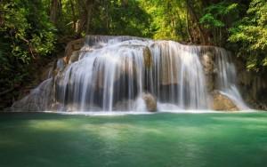 آبشار forest-trees-waterfall