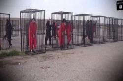 محاکمه در قفس!+عکس