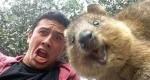 سلفیهای خندهدار با حیوانات