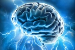 غذاهایی که مغز را مختل میکند