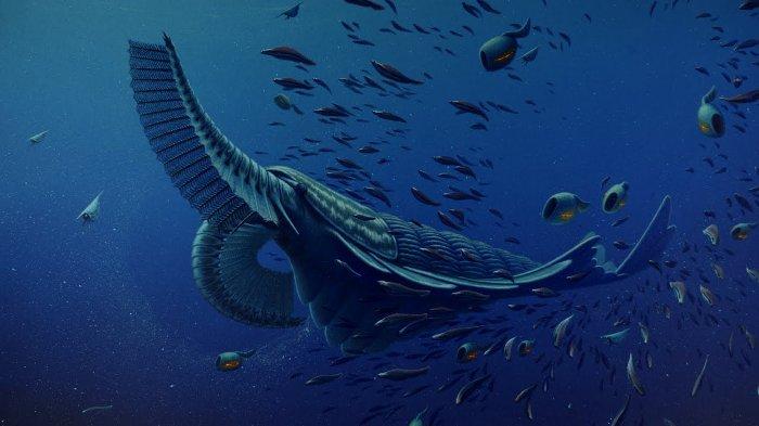 اسرار حل نشده علمی,cambrian creatures