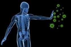 عملکرد سیستم ایمنی بدن چگونه است؟