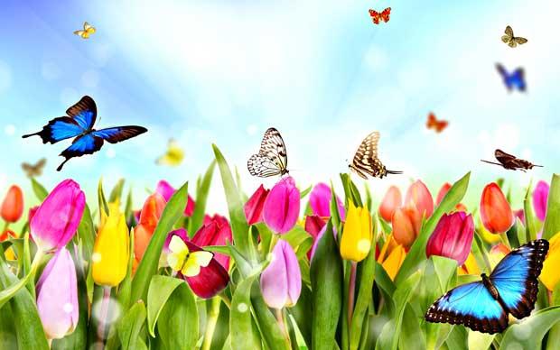 دیدن فصل بهار در خواب نشانه چیست